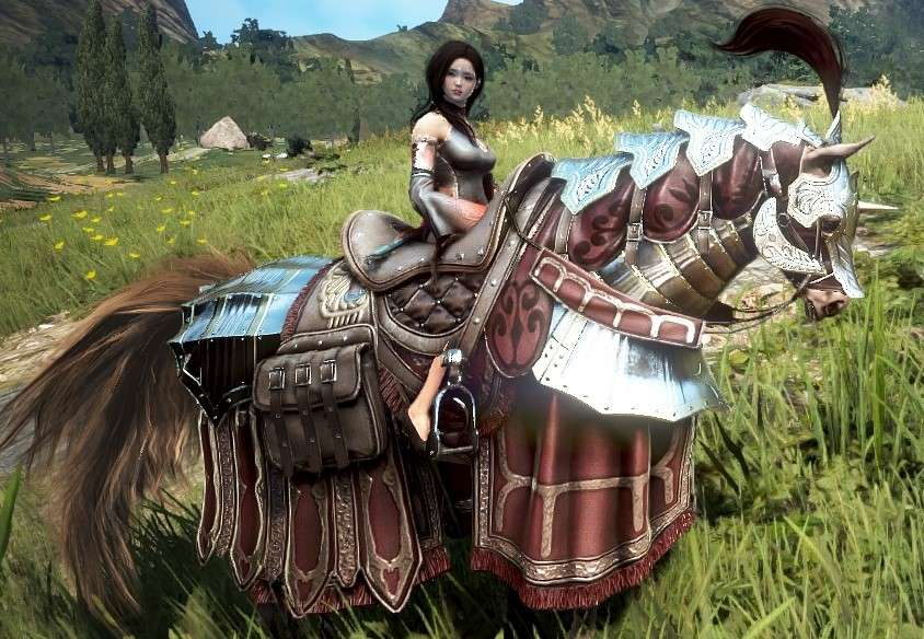 Bdo how to use horse skill change