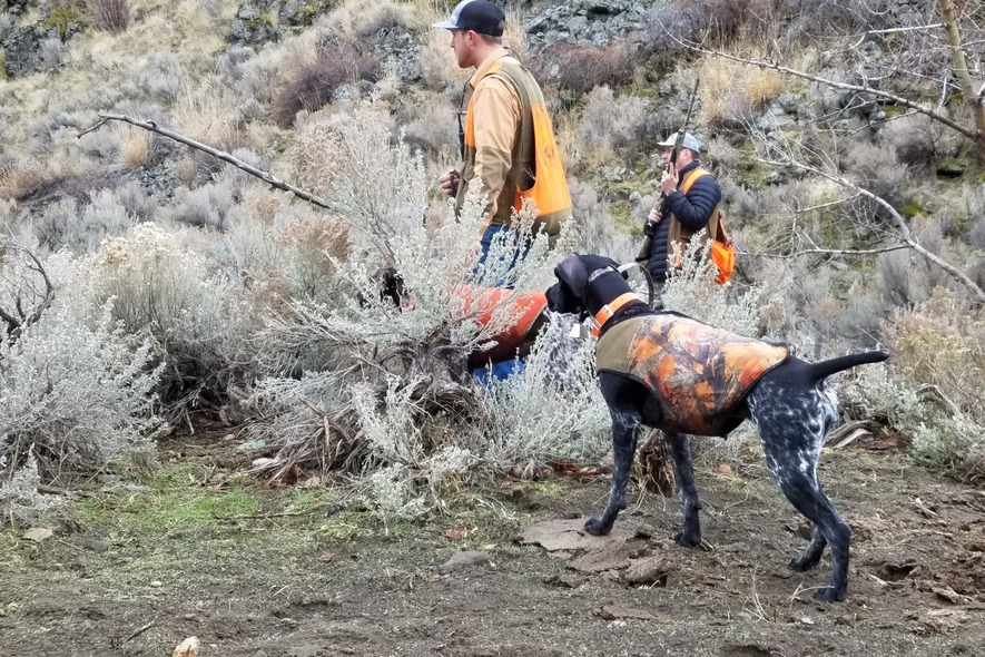 Dean partridge guided hunts cost